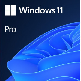 Microsoft Windows 11 Pro...